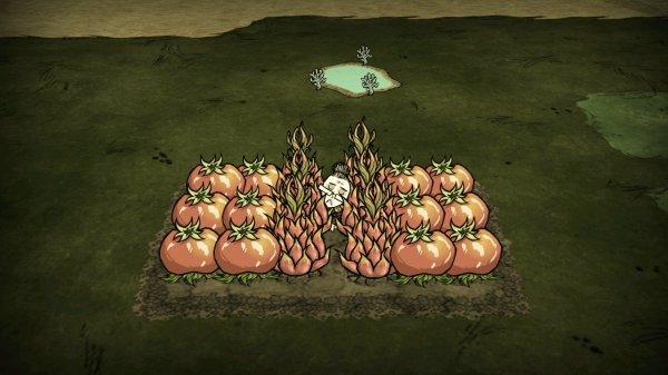 飢荒-種瓜得瓜農作物種植配比及肥料需求 5