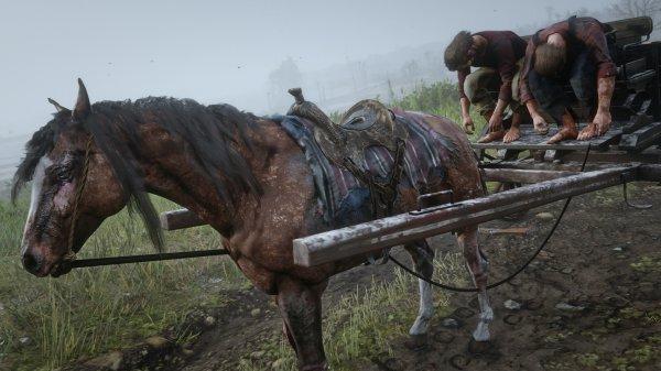 碧血狂殺2-莫弗里家族隱藏馬匹入手 3