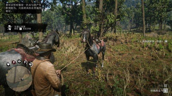 碧血狂殺2-莫弗里家族隱藏馬匹入手 25