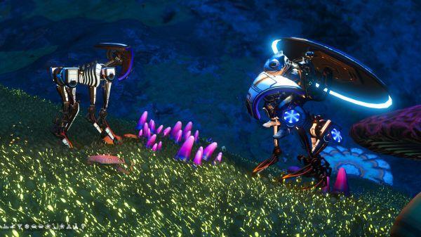無人深空-部分怪異外觀寵物坐標 33