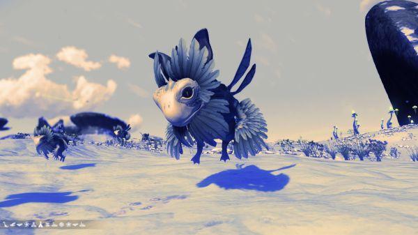 無人深空-部分怪異外觀寵物坐標 11