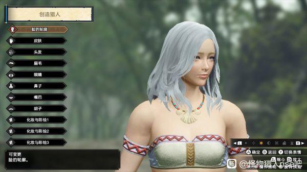 魔物獵人崛起-白色長發小姐姐捏臉數據 23