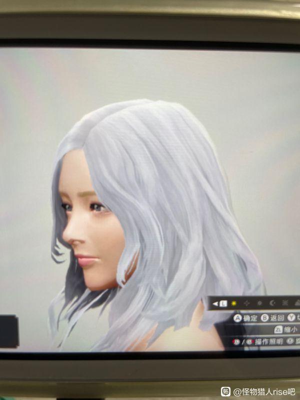 魔物獵人崛起-白色長發小姐姐捏臉數據 25