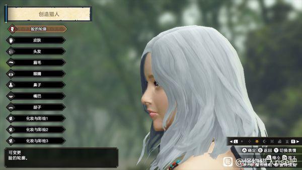魔物獵人崛起-白色長發小姐姐捏臉數據 27