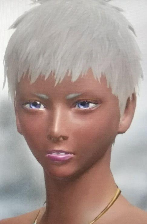 魔物獵人崛起-高顏值美女捏臉數據合集 25