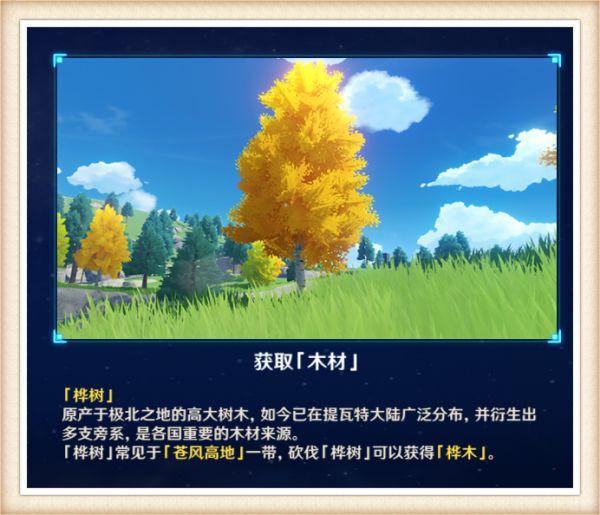 原神-1.5版塵歌壺全木材入手位置分享 43