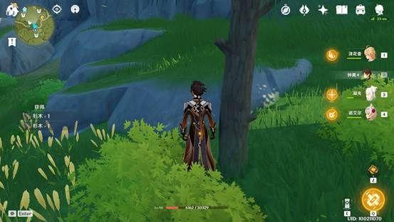原神-快速收集各類木材 11