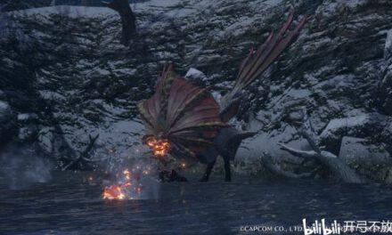 魔物獵人崛起-傘鳥特殊大金攻略