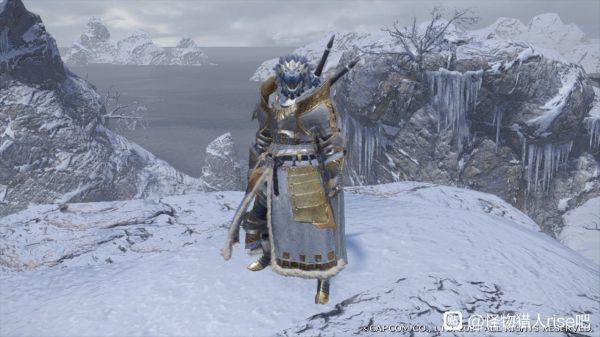 魔物獵人崛起-男角色雪境騎士幻化外觀 9